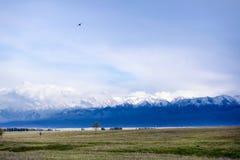 Vue de champ et de mountaines Photographie stock
