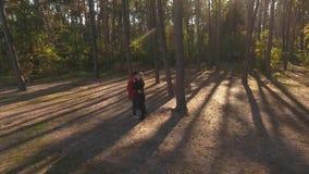 Vue de ci-dessus sur un couple embrassant dans une forêt de pin dans la lumière de coucher du soleil Un couple interracial affect banque de vidéos
