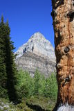 vue de ciel de montagne Photos stock
