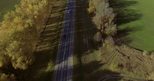 Vue de ciel de voiture de route d'automne Longueur aérienne 4k banque de vidéos