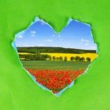 Vue de coeur de Livre vert Photographie stock