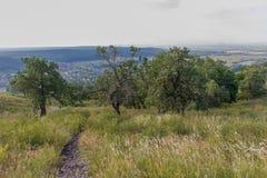 Vue de colline à la montagne solitaire dans la distance Photographie stock