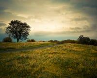 Vue de colline de Calton, Edimbourg image libre de droits
