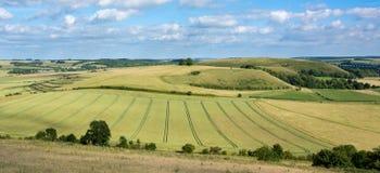 Vue de colline moyenne et de colline de Scratchbury Images stock