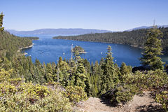 Vue de compartiment vert, Lake Tahoe Photo libre de droits