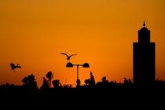 Vue de coucher du soleil de Maroc Marrakech avec un vol de cigogne Image stock