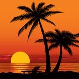 Vue de coucher du soleil en plage avec la silhouette de palmier Image stock