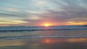 Vue de coucher du soleil sur la plage d'océan avec les oiseaux 4k banque de vidéos
