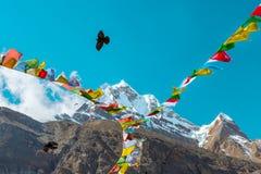 Vue de crête élevée dans les drapeaux et la corneille bouddhistes de montagnes de l'Himalaya Image libre de droits