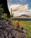 Vue de crête de Picacho Image libre de droits