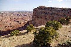 Vue de désert Image libre de droits