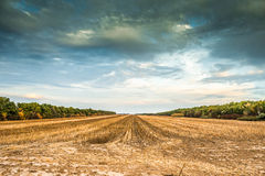 Vue de désert de Kharkov en automne Image stock