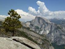 Vue de demi de dôme en stationnement national de Yosemite Photographie stock
