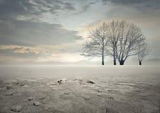 Vue de Desertic Photos libres de droits