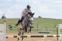 Vue de face de cavalier sautant un cheval rouan Photographie stock libre de droits