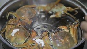 Vue de faire cuire le crabe dans un pot, Xi'an, Shaanxi, Chine banque de vidéos