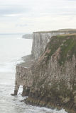 Vue de falaises de Bempton Photo stock