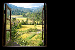 Vue de fenêtre aux terrasses merveilleuses d'un riz avec l'espace photo stock