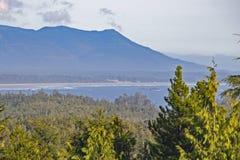 Vue de feuillage luxuriant de Tofino et de Long Beach dans l'horizon, île de Vancouver image stock