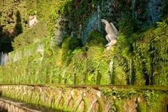 Vue de fin de fontane d'organisation du traité central en villa D-este Tivoli - à Rome Images libres de droits