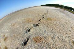 Vue de Fisheye d'un lac Photo stock