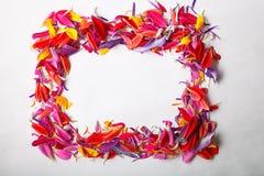 Vue de fleur Images stock