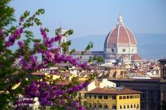 Vue de Florence au temps de lever de soleil Images libres de droits