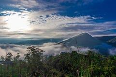 Vue de forêt avec de bas nuages de collines et ciel bleu photographie stock libre de droits