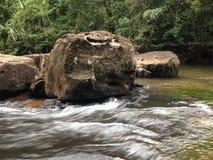 Vue de forêt de cascade photo stock