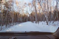 Vue de forêt d'hiver de fenêtre de voiture Images stock