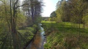 Vue de forêt d'une petite rivière Images stock
