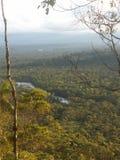 Vue de forêt tropicale d'Amazone Photographie stock