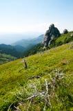 Vue de formation de roche de Goliat en montagnes de Ciucas, Roumain Carpathiens Images stock