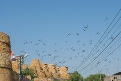 Vue de fort de Jaisalmer de l'extérieur Images stock