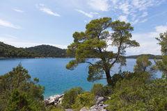 Vue de grand lac de Mljet Image stock