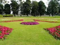 Vue de jardin Photographie stock libre de droits