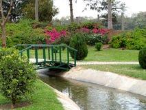 Vue de jardin Image libre de droits