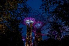 Vue de jardin par la baie la nuit - Singapour Photo stock