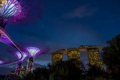 Vue de jardin par la baie la nuit - Singapour Image libre de droits