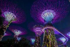 Vue de jardin par la baie la nuit - Singapour Photo libre de droits