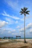 Vue de jour de plage de sable avec l'arbre de noix de coco Image libre de droits
