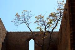 Vue de l'église de Santa Maria Spasimo allo à Palerme, Italie photos stock
