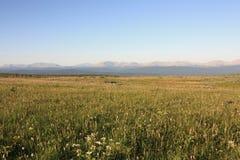 Vue de l'arête principale d'Ural du plateau de Kvarkush images libres de droits