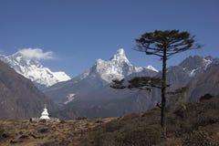 Vue de l'Himalaya Image libre de droits