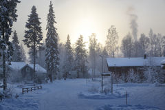 Vue de l'hiver Images libres de droits
