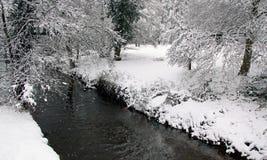 Vue de l'hiver de fleuve, de neige et de forêt Photographie stock libre de droits