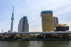 Vue de l'horizon de Tokyo de l'autre côté de la rivière de Sumida Image libre de droits