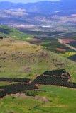 Vue de l'Israël Photo libre de droits