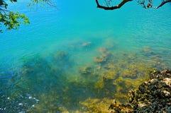 Vue de l'océan Images libres de droits