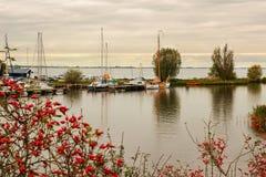 Vue de la baie d'automne Image stock